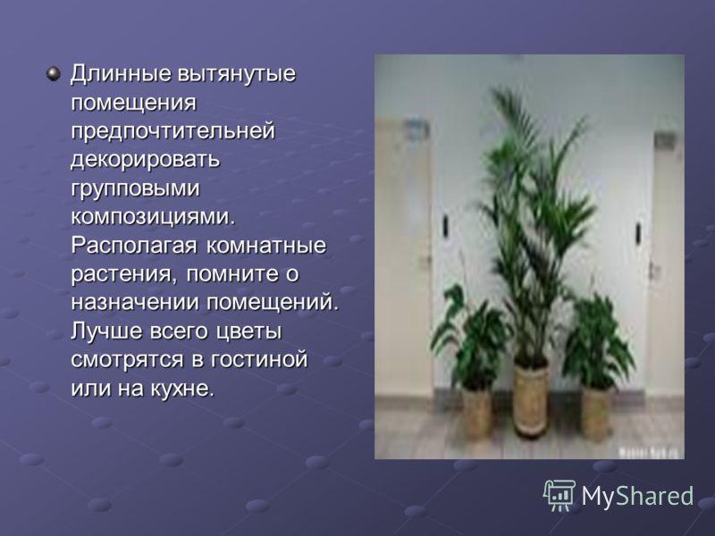 Длинные вытянутые помещения предпочтительней декорировать групповыми композициями. Располагая комнатные растения, помните о назначении помещений. Лучше всего цветы смотрятся в гостиной или на кухне.