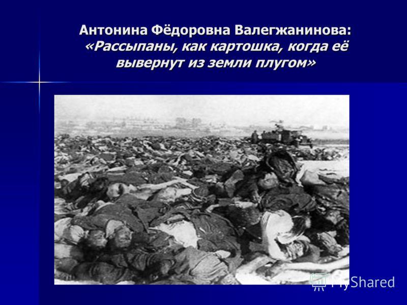 Антонина Фёдоровна Валегжанинова: «Рассыпаны, как картошка, когда её вывернут из земли плугом»