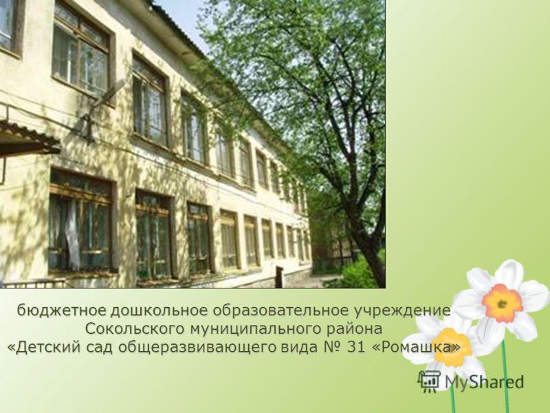 бюджетное дошкольное образовательное учреждение Сокольского муниципального района «Детский сад общеразвивающего вида 31 «Ромашка»
