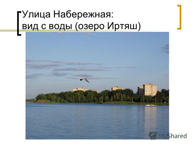 Улица Набережная: вид с воды (озеро Иртяш)