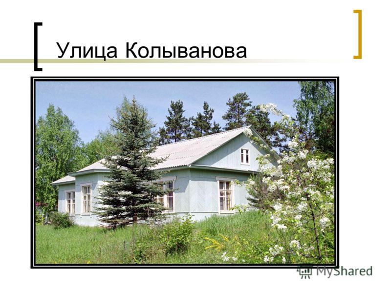 Улица Колыванова