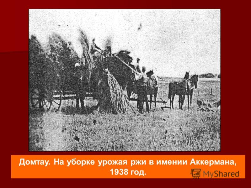 Домтау. На уборке урожая ржи в имении Аккермана, 1938 год.