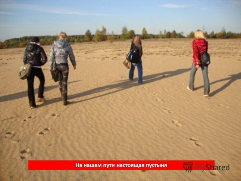 На нашем пути настоящая пустыня