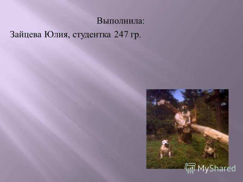 Выполнила : Зайцева Юлия, студентка 247 гр.