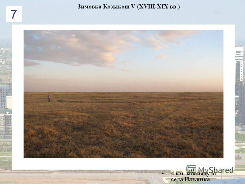 Зимовка Козыкош V (XVIII-XIX вв.) 4 км. к западу от села Ильинка 7
