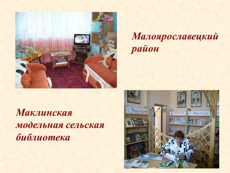 43 Маклинская модельная сельская библиотека Малоярославецкий район