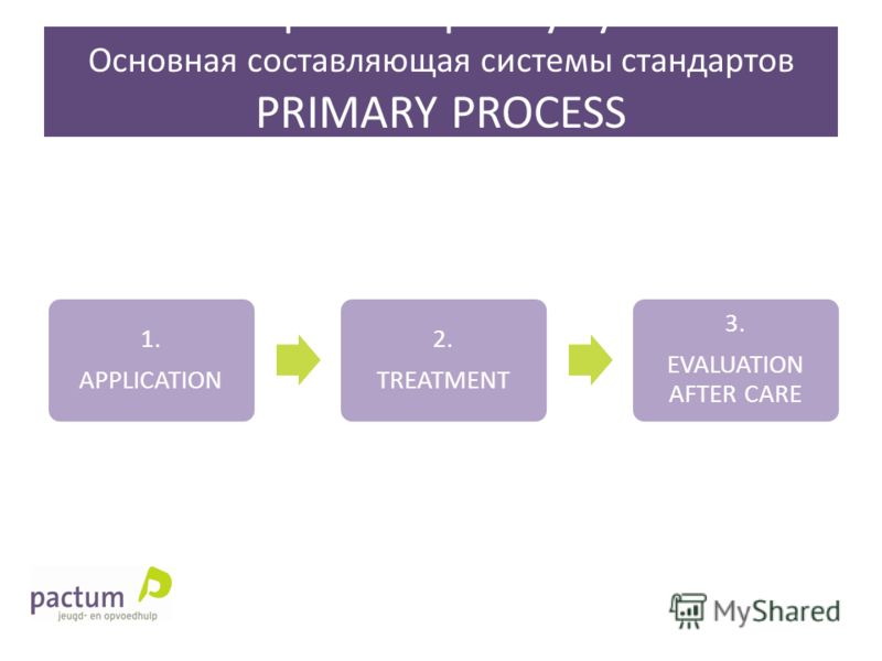 Main part of quality system Основная составляющая системы стандартов PRIMARY PROCESS ПЕВИЧНЫЙ ПРОЦЕСС 1. APPLICATION 2. TREATMENT 3. EVALUATION AFTER CARE