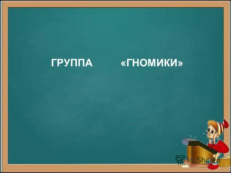 ГРУППА «ГНОМИКИ»