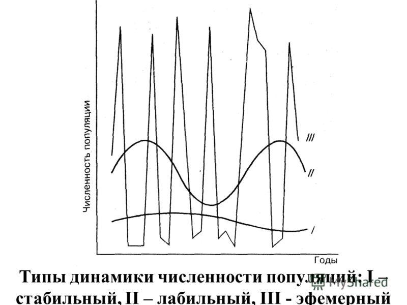 Типы динамики численности популяций: I – стабильный, II – лабильный, III - эфемерный