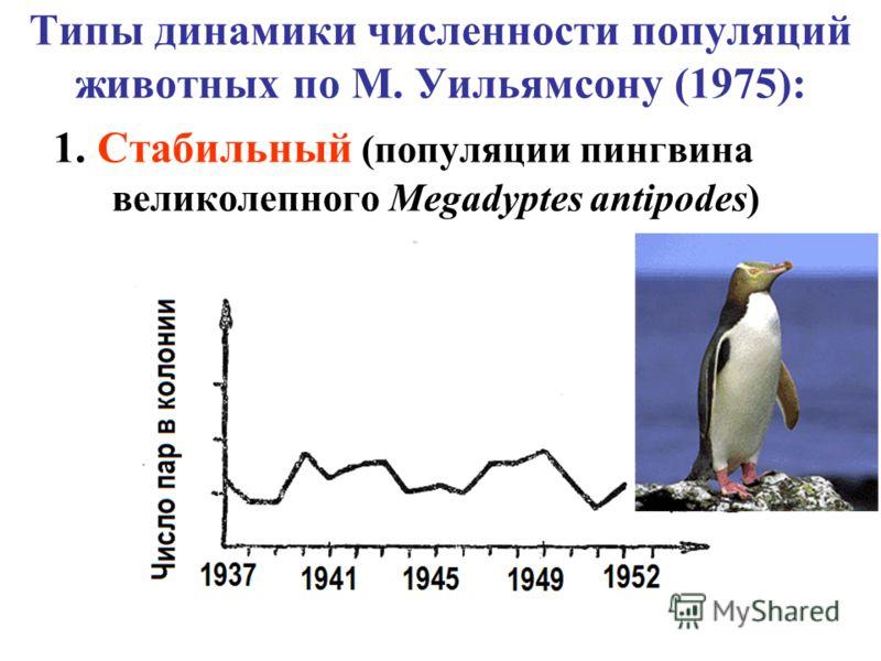 Типы динамики численности популяций животных по М. Уильямсону (1975): 1. Стабильный (популяции пингвина великолепного Megadyptes antipodes)