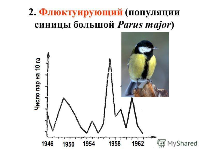 2. Флюктуирующий (популяции синицы большой Parus major)
