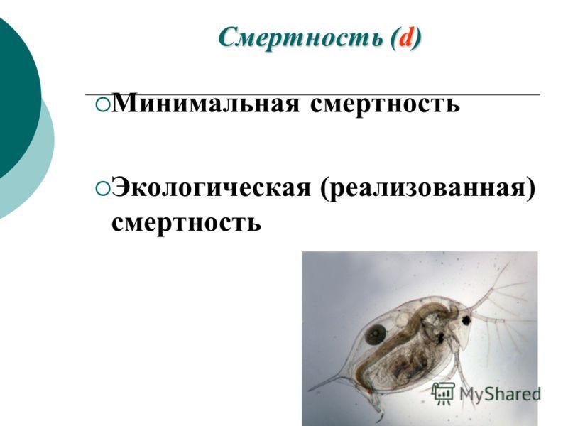 Смертность (d) Минимальная смертность Экологическая (реализованная) смертность
