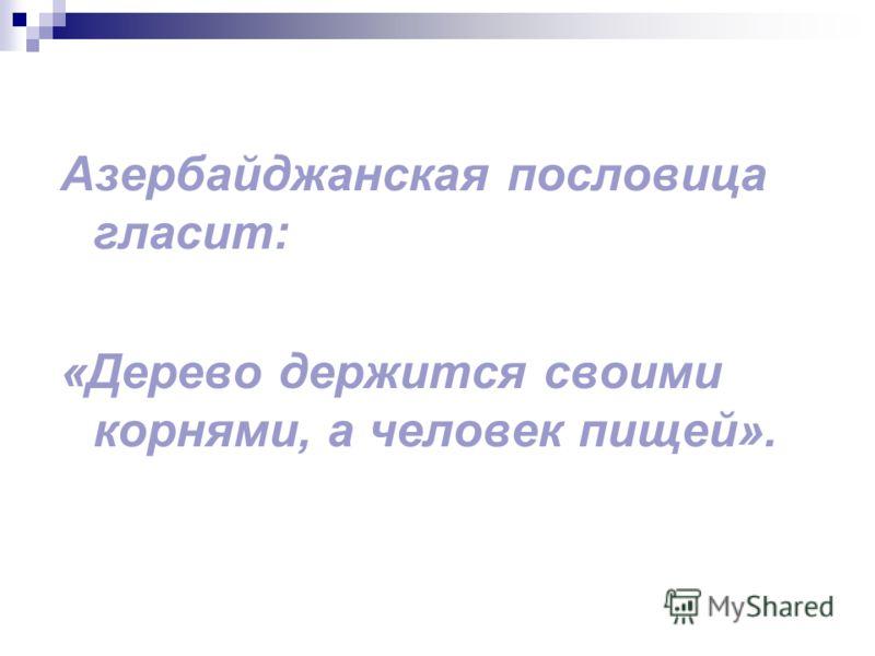 Азербайджанская пословица гласит: «Дерево держится своими корнями, а человек пищей».