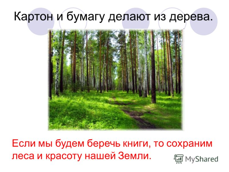 Картон и бумагу делают из дерева. Если мы будем беречь книги, то сохраним леса и красоту нашей Земли.