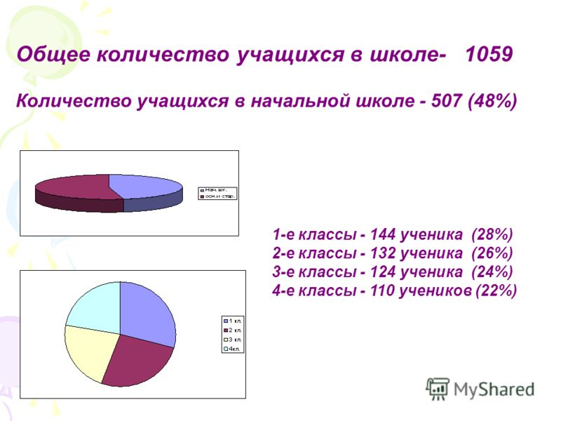 Общее количество учащихся в школе- 1059 Количество учащихся в начальной школе - 507 (48%) 1-е классы - 144 ученика (28%) 2-е классы - 132 ученика (26%) 3-е классы - 124 ученика (24%) 4-е классы - 110 учеников (22%)