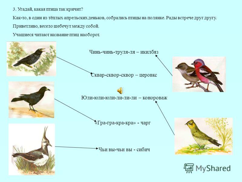 «Гра-гра-кра-кра» - чарг Сквар-сквор-сквор – церовкс Юли-юли-юли-ли-ли-ли – конороваж Чинь-чинь-труля-ля – икилбяз Чьи вы-чьи вы - сибич 3. Угадай, какая птица так кричит? Как-то, в один из тёплых апрельских деньков, собрались птицы на полянке. Рады