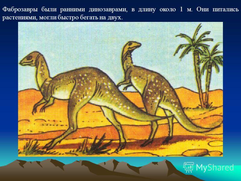Фаброзавры были ранними динозаврами, в длину около 1 м. Они питались растениями, могли быстро бегать на двух.