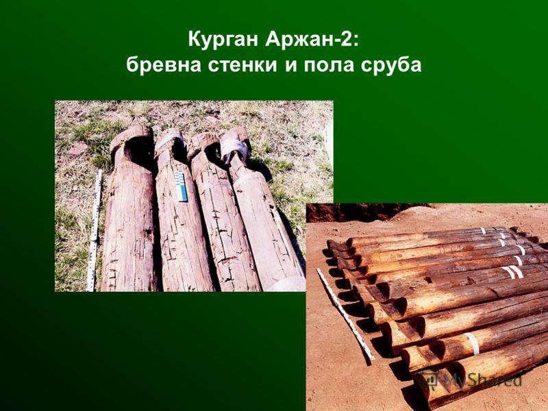 Курган Аржан-2: бревна стенки и пола сруба