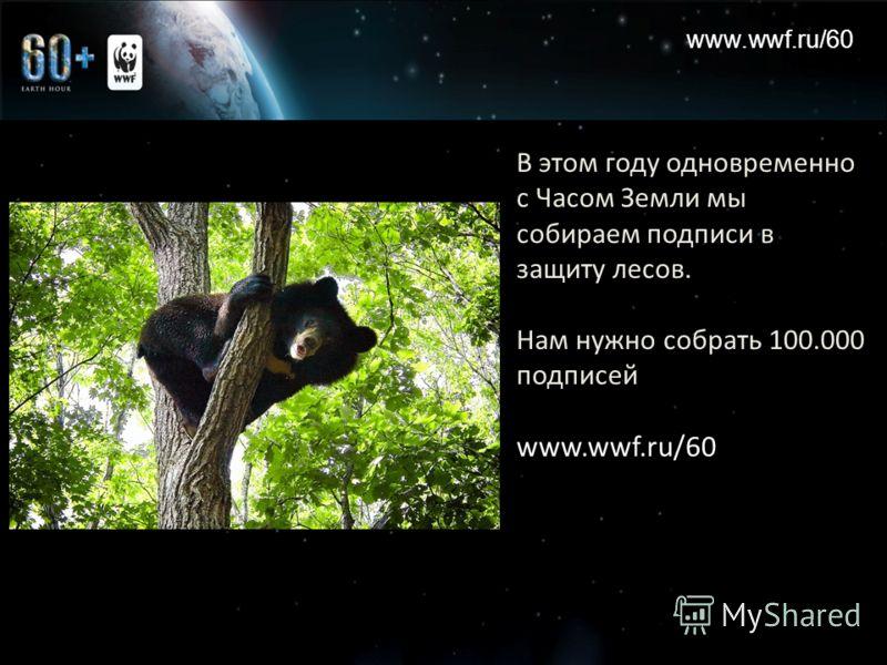 www.wwf.ru/60 В этом году одновременно с Часом Земли мы собираем подписи в защиту лесов. Нам нужно собрать 100.000 подписей www.wwf.ru/60