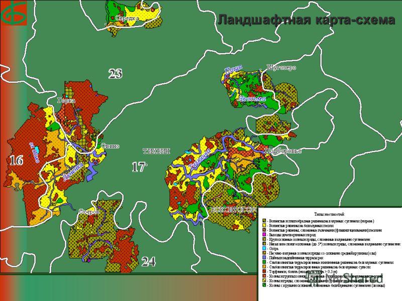 Ландшафтная карта-схема
