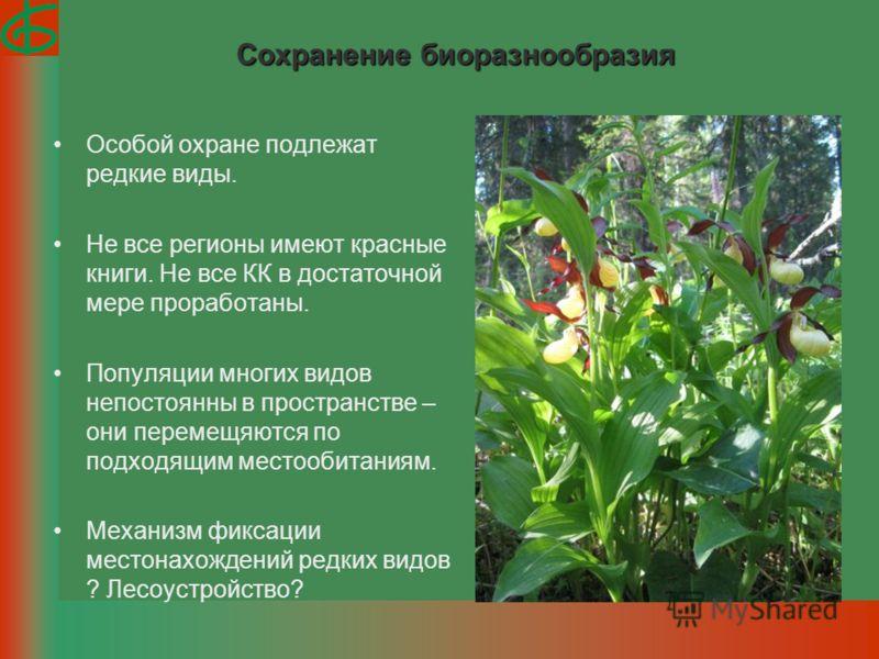 Сохранение биоразнообразия Особой охране подлежат редкие виды. Не все регионы имеют красные книги. Не все КК в достаточной мере проработаны. Популяции многих видов непостоянны в пространстве – они перемещяются по подходящим местообитаниям. Механизм ф