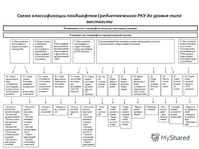 Схема классификации ландшафтов Среднетаежного РКУ до уровня типа местности 7