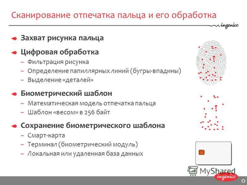 Сканирование отпечатка пальца и его обработка Захват рисунка пальца Цифровая обработка –Фильтрация рисунка –Определение папиллярных линий (бугры-впадины) –Выделение «деталей» Биометрический шаблон –Математическая модель отпечатка пальца –Шаблон «весо