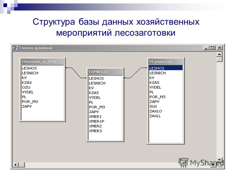 Структура базы данных хозяйственных мероприятий лесозаготовки