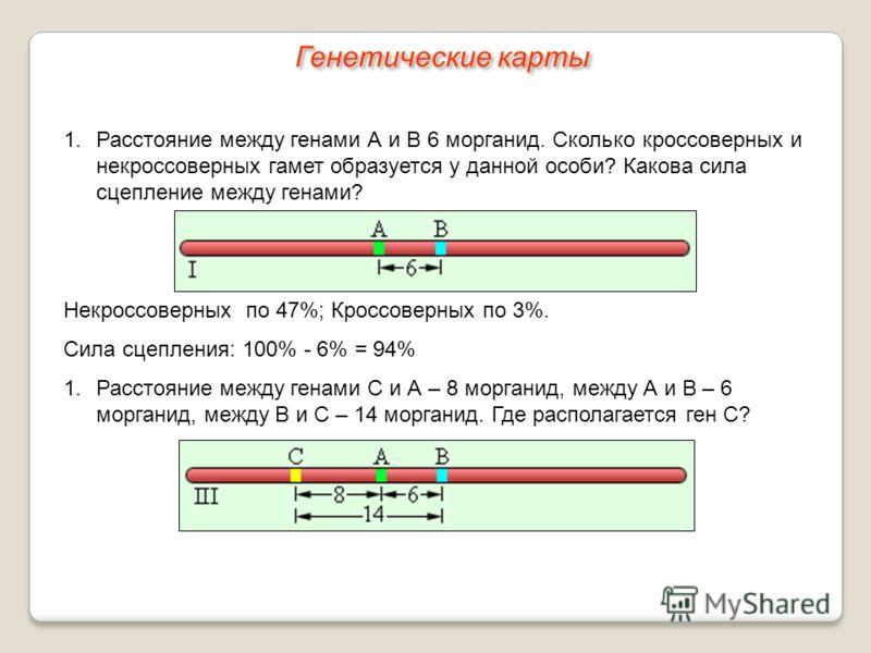 Генетические карты 1.Расстояние между генами А и В 6 морганид. Сколько кроссоверных и некроссоверных гамет образуется у данной особи? Какова сила сцепление между генами? Некроссоверных по 47%; Кроссоверных по 3%. Сила сцепления: 100% - 6% = 94% 1.Рас