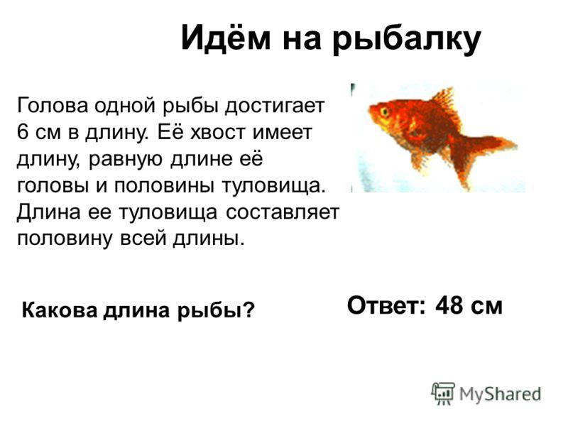 Идём на рыбалку Голова одной рыбы достигает 6 см в длину. Её хвост имеет длину, равную длине её головы и половины туловища. Длина ее туловища составляет половину всей длины. Какова длина рыбы? Ответ: 48 см