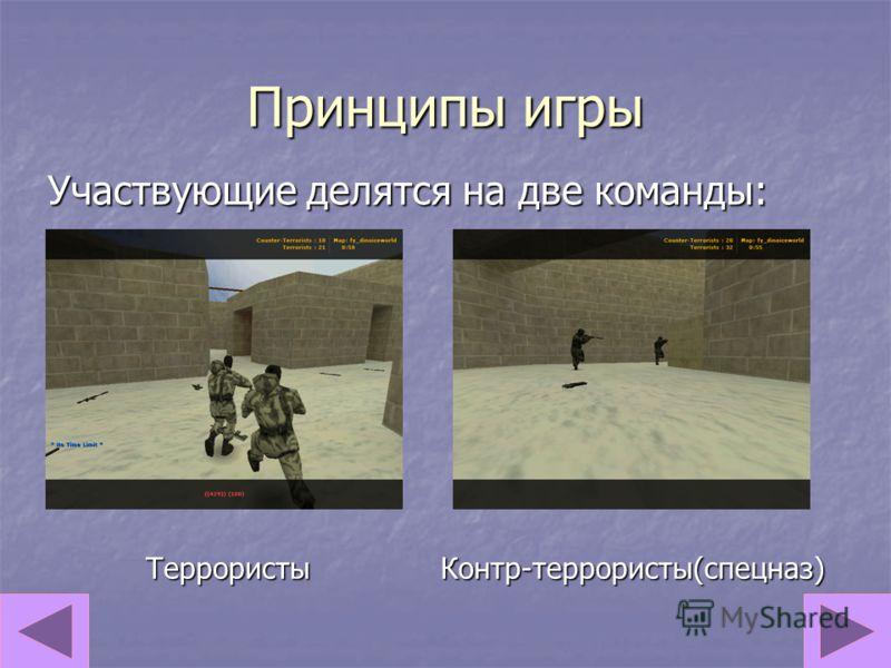 Принципы игры Участвующие делятся на две команды: ТеррористыКонтр-террористы(спецназ)