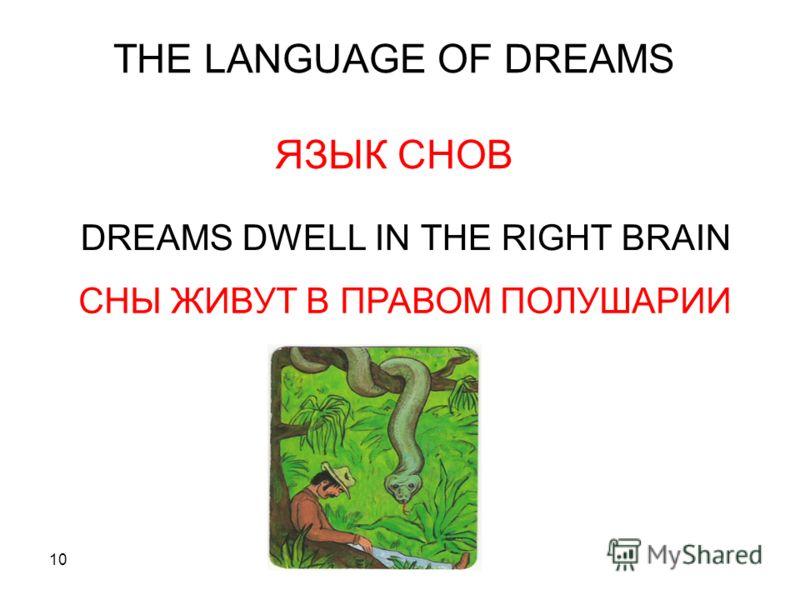 10 THE LANGUAGE OF DREAMS ЯЗЫК СНОВ DREAMS DWELL IN THE RIGHT BRAIN СНЫ ЖИВУТ В ПРАВОМ ПОЛУШАРИИ