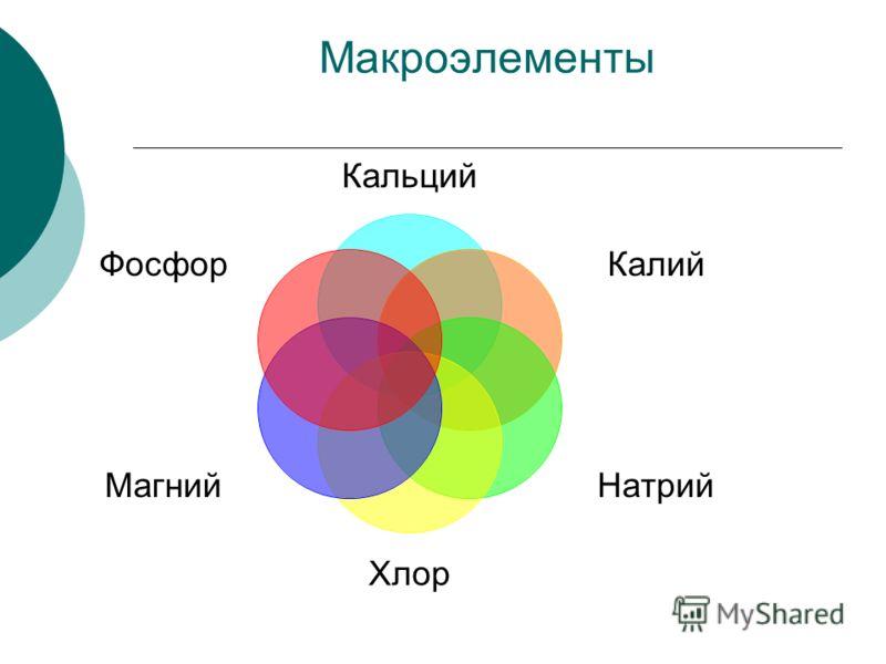 Макроэлементы Кальций Калий Натрий Хлор Магний Фосфор