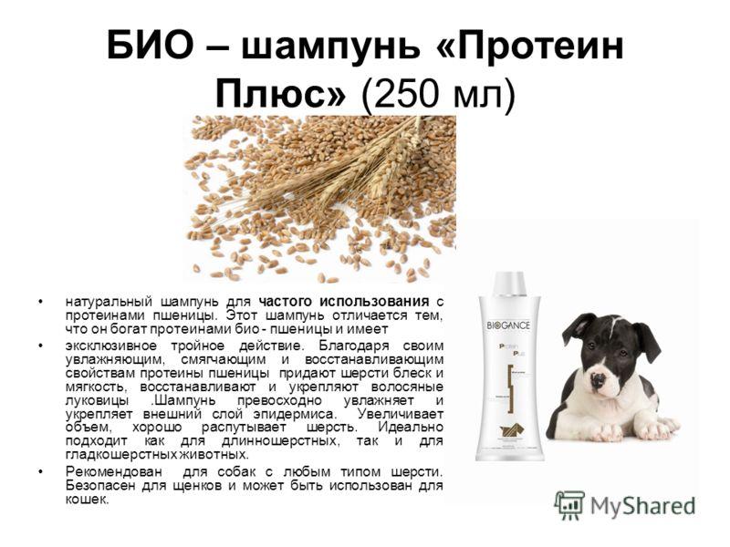 БИО – шампунь «Протеин Плюс» (250 мл) натуральный шампунь для частого использования с протеинами пшеницы. Этот шампунь отличается тем, что он богат протеинами био - пшеницы и имеет эксклюзивное тройное действие. Благодаря своим увлажняющим, смягчающи
