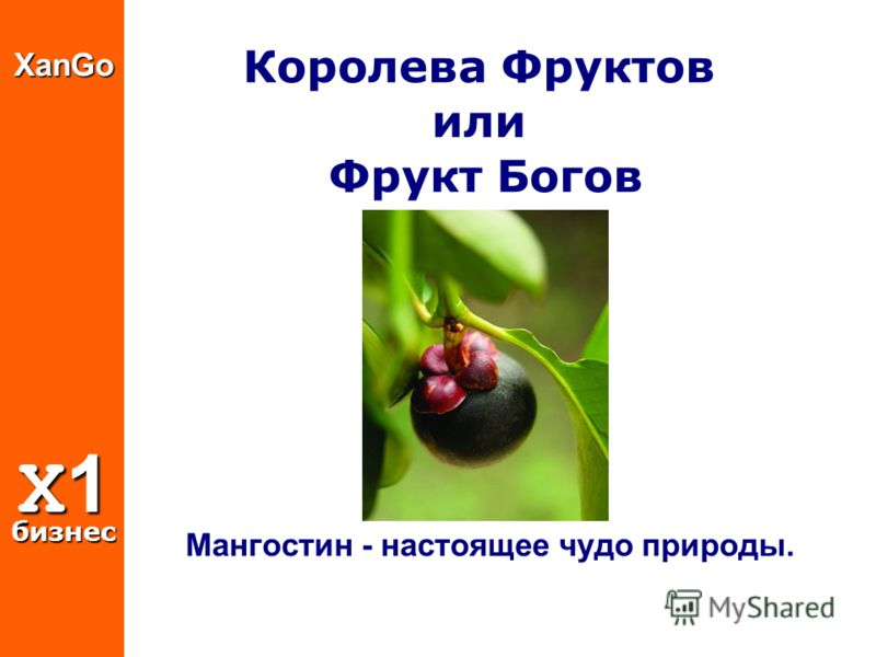 XanGo X1 бизнес Королева Фруктов или Фрукт Богов Мангостин - настоящее чудо природы.