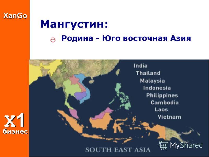XanGo X1 бизнес Мангустин: Родина - Юго восточная Азия