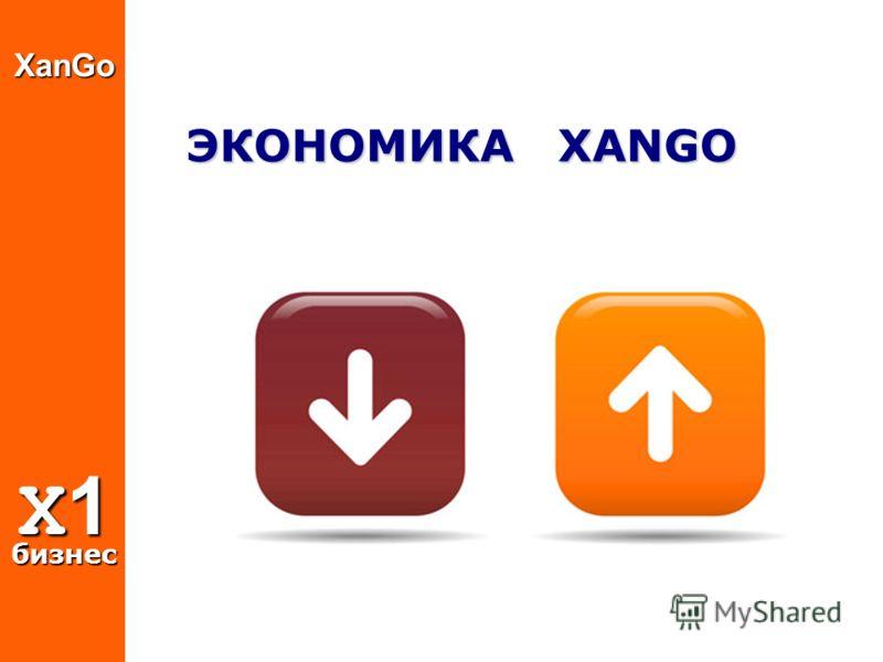 ЭКОНОМИКА XANGO XanGo X1 бизнес