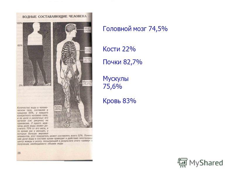 Головной мозг 74,5% Кости 22% Почки 82,7% Мускулы 75,6% Кровь 83%
