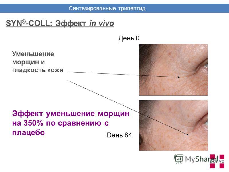 День 0 Dень 84 Уменьшение морщин и гладкость кожи Эффект уменьшение морщин на 350% по сравнению с плацебо SYN ® -COLL: Эффект in vivo Синтезированные трипептид