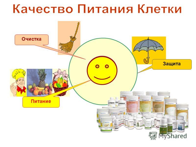 Защита Питание Очистка