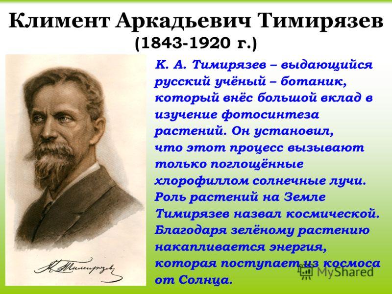Климент Аркадьевич Тимирязев (1843-1920 г.) К. А. Тимирязев – выдающийся русский учёный – ботаник, который внёс большой вклад в изучение фотосинтеза растений. Он установил, что этот процесс вызывают только поглощённые хлорофиллом солнечные лучи. Роль