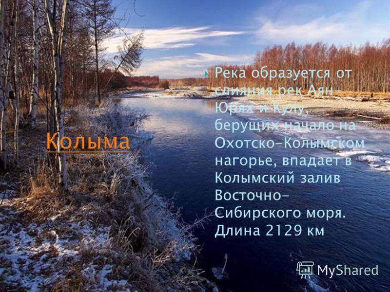 Река образуется от слияния рек Аян- Юрях и Кулу, берущих начало на Охотско-Колымском нагорье, впадает в Колымский залив Восточно- Сибирского моря. Длина 2129 км