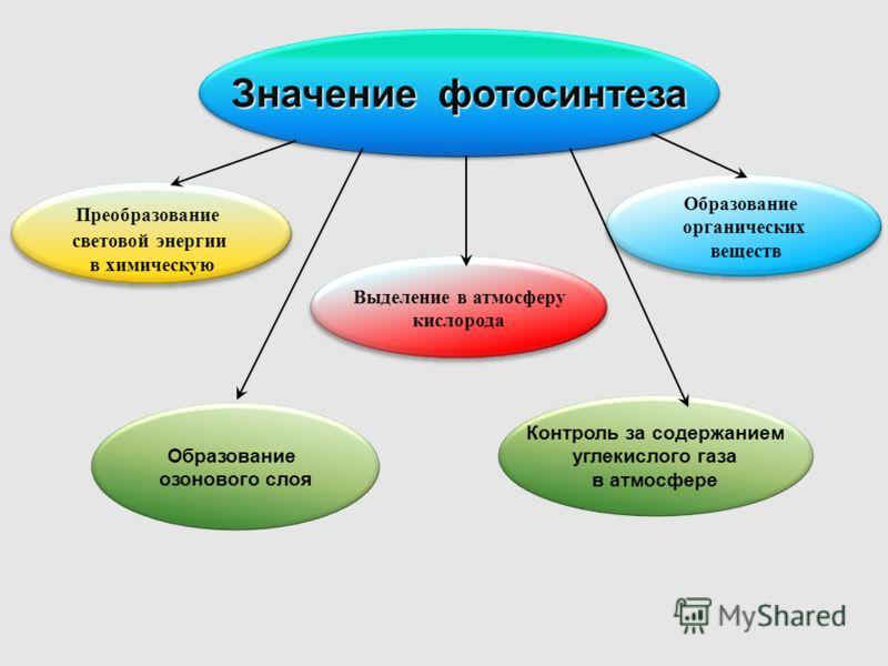 В процессе фотосинтеза энергия