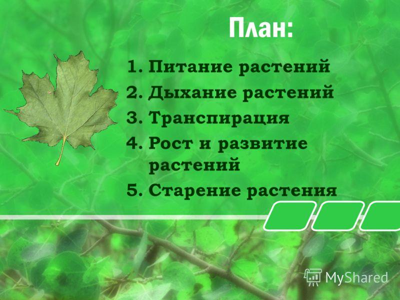 План: 1.Питание растений 2.Дыхание растений 3.Транспирация 4.Рост и развитие растений 5.Старение растения