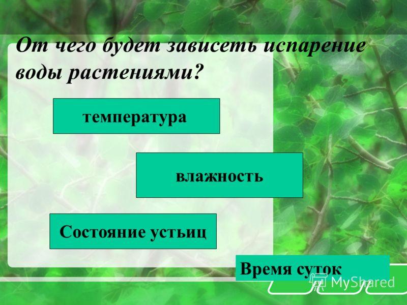 От чего будет зависеть испарение воды растениями? температура влажность Состояние устьиц Время суток