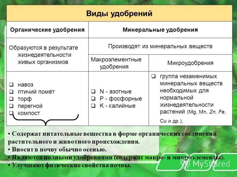 Виды удобрений Органические