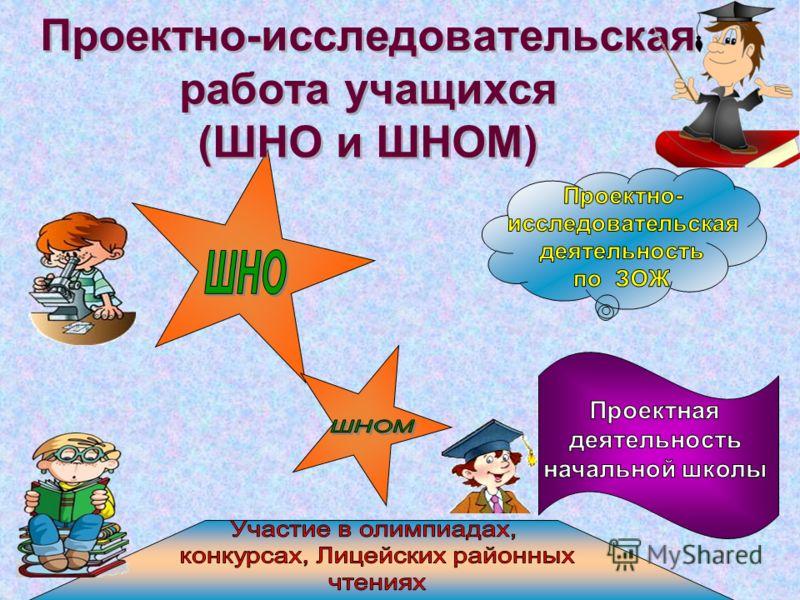 Проектно-исследовательская работа учащихся (ШНО и ШНОМ)