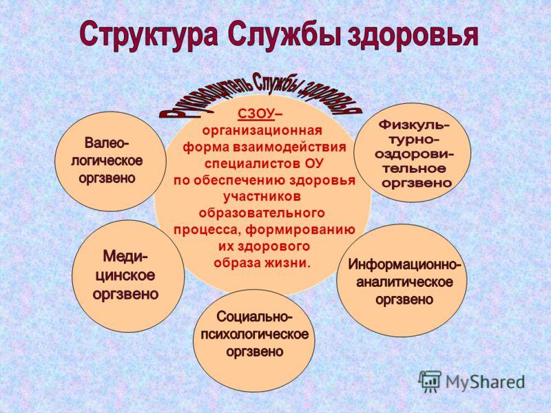 СЗОУ– организационная форма взаимодействия специалистов ОУ по обеспечению здоровья участников образовательного процесса, формированию их здорового образа жизни.