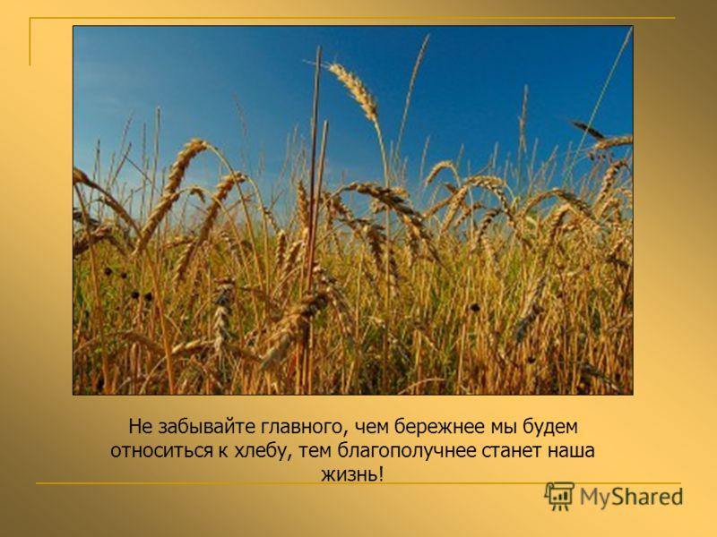Не забывайте главного, чем бережнее мы будем относиться к хлебу, тем благополучнее станет наша жизнь!