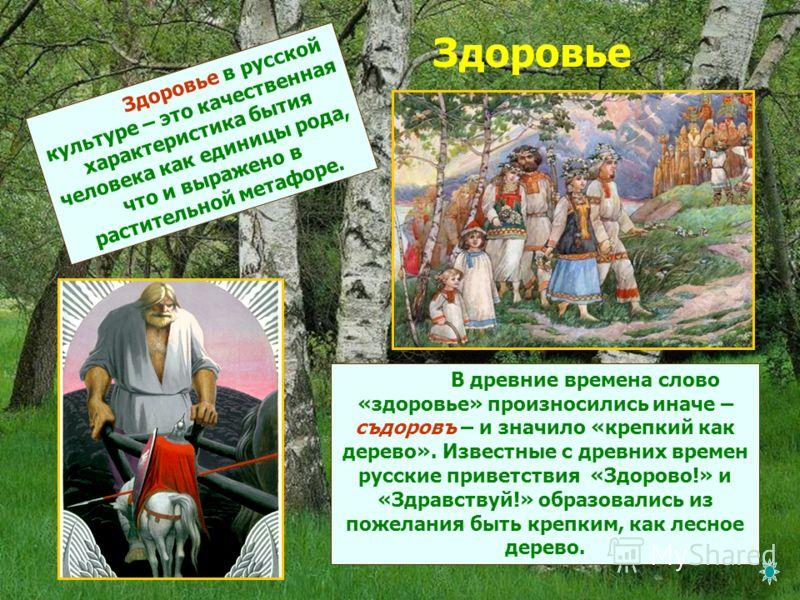 Здоровье Здоровье в русской культуре – это качественная характеристика бытия человека как единицы рода, что и выражено в растительной метафоре. В древние времена слово «здоровье» произносились иначе – съдоровъ – и значило «крепкий как дерево». Извест
